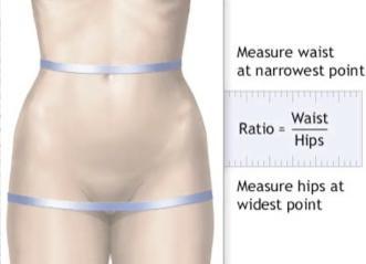 obesita addominale whr